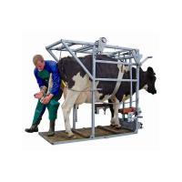 Оборудование для разведения крупного рогатого скота