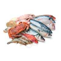 Другие виды морепродуктов