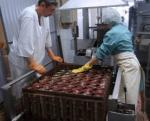 Мясоперарабатывающий холдинг Арго открыл новый завод