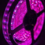 Герметичная светодиодная лента многоцветная, 5050 600 LED, IP 65, 28,8 Вт/м, 24V
