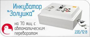 Бытовой инкубатор Золушка 220/12V на 70 яиц автоматический поворот цифровой термометр измеритель влажности