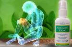 Анти артрит нано для лечения спины и суставов