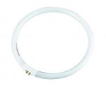 Лампа флуоресцентная Standard Instruments T5 22W для 8066D2