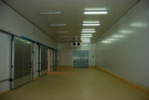 Ворота для холодильных складов и камер