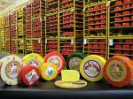 Сыр Обезжиренный для пром переработки