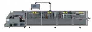 Упаковочный автомат -для упаковки в пакеты Дой-Пак с формированием пакета, мод. DS-60