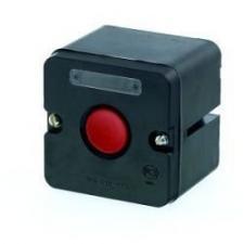 Пост управления кнопочный ПКЕ-222-1