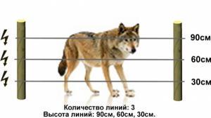 Электропастух для содержания животных