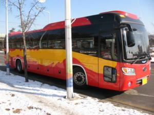 Туристический автобус Kia Granbird, 2012г