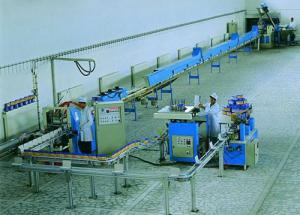 Оборудование для производства прессованного сахара рафинада 12 тонн/сутки