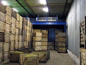 Контейнера для хранение овощей