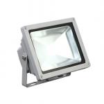 Прожектор светодиодный 50 Ватт Эконом холодный свет COB