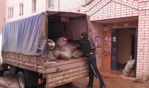 Вывоз строительного мусора, грунта,боя, отходов Сочи Адлер