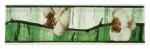 Каррара PRORAB Бордюр 200х57х7 Каррара 08 CR 1131 TG 016 0007