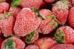 Комплект оборудования для производства быстрозамороженных фруктов и овощей КМЦ-0606