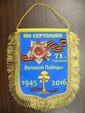 Вымпел с логотипом спб в спб петербург санкт-петербург