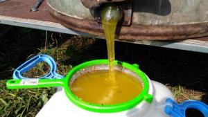 Донниковый Мёд пчелиный Курганский с пасеки.
