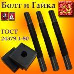 Болт фундаментный с анкерной плитой тип 2.1 М48х1000 09г2с ГОСТ 24379.1-80